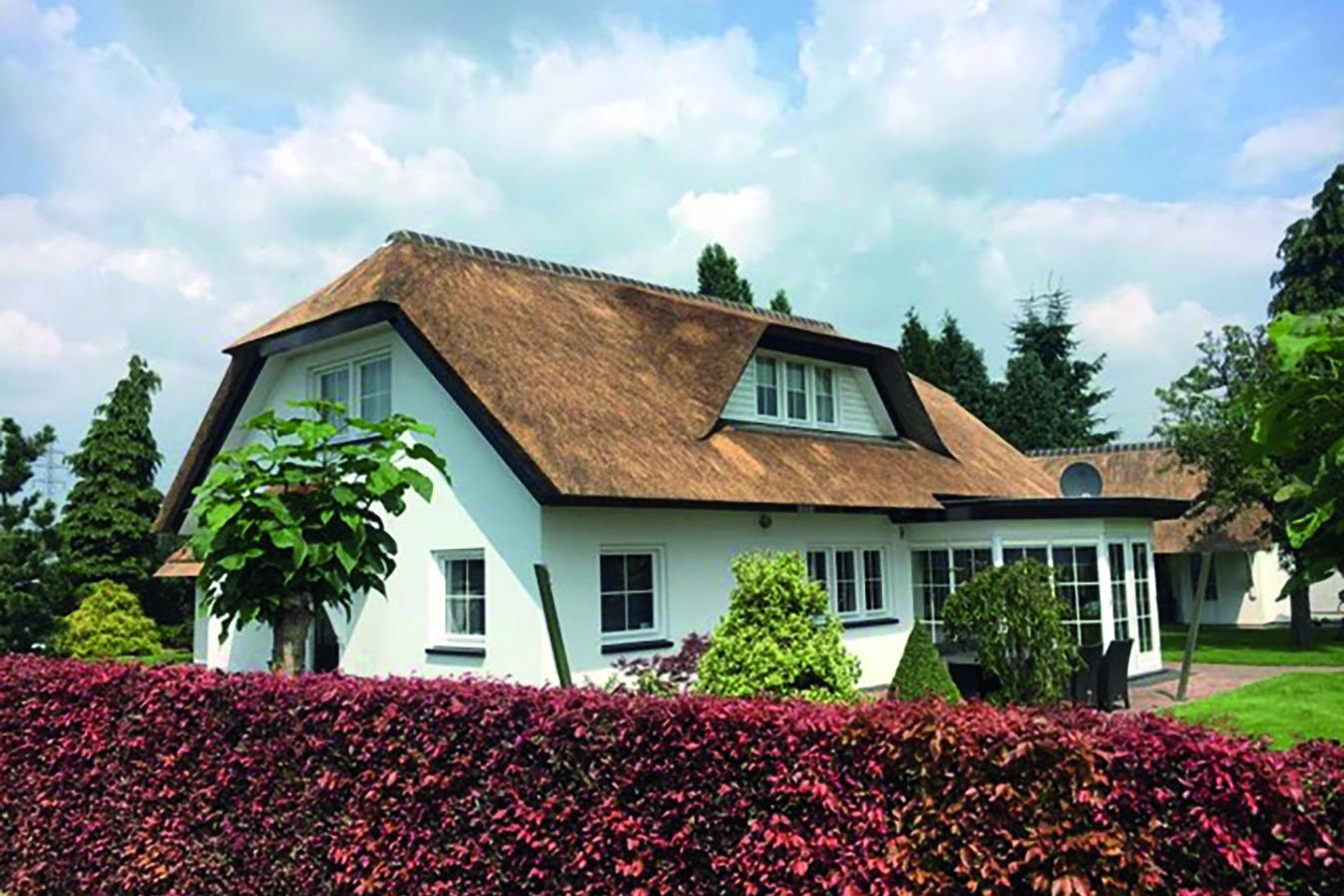 Villa met rieten dak